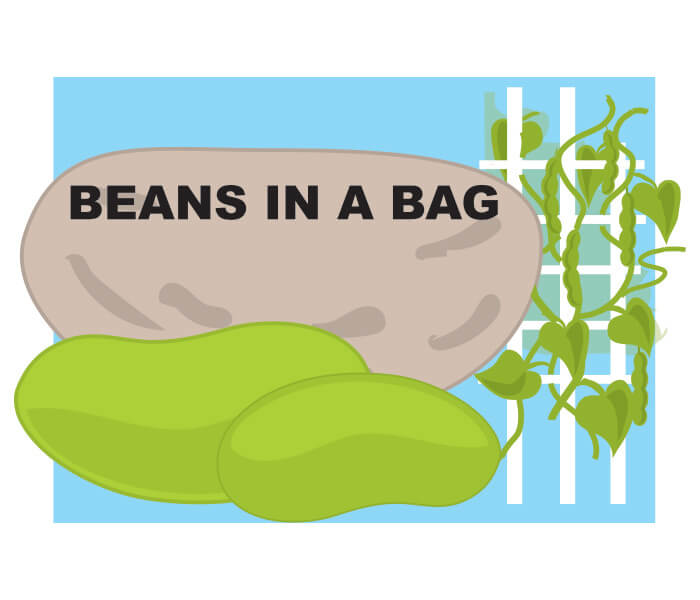 Beans in a Bag