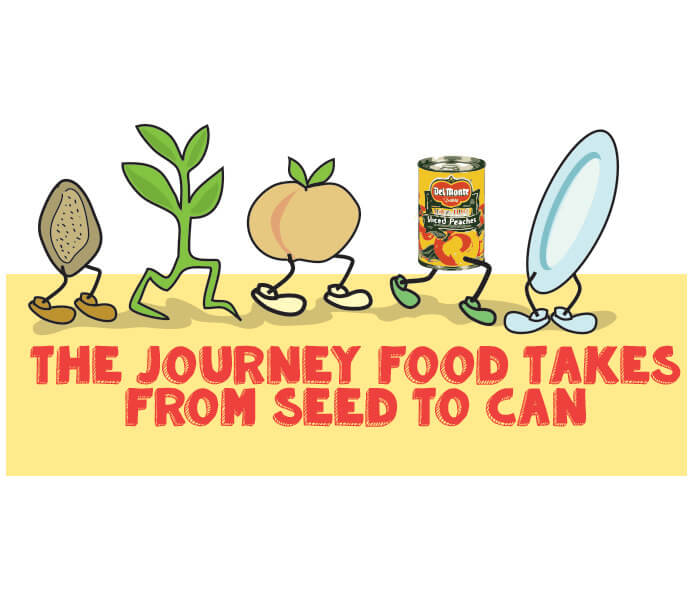 Seed to Can Journey