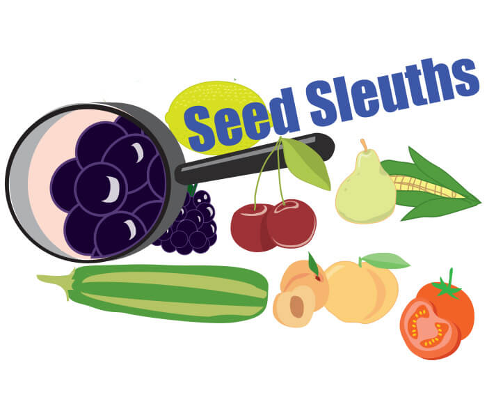 Seed Sleuths
